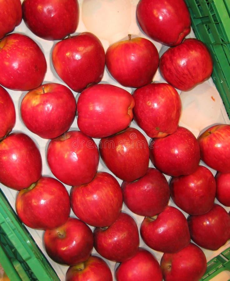 健康的苹果 库存照片