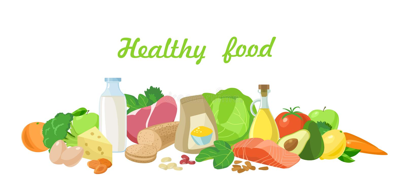 健康的食物 向量 向量例证