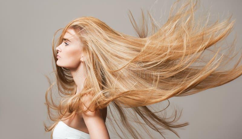 健康美丽的头发 库存图片