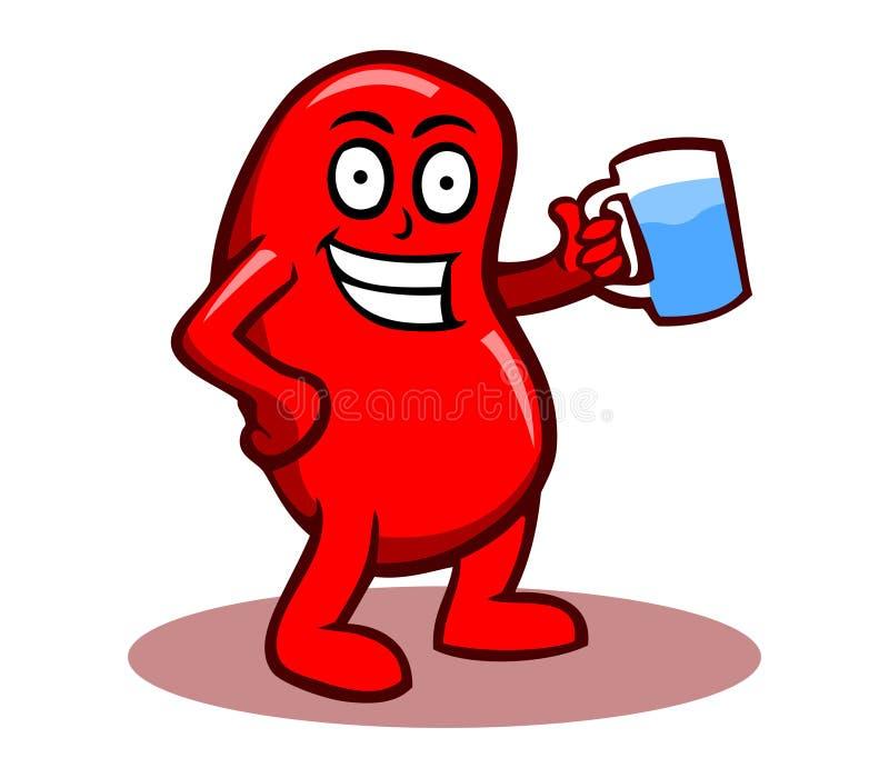 健康肾脏 库存例证