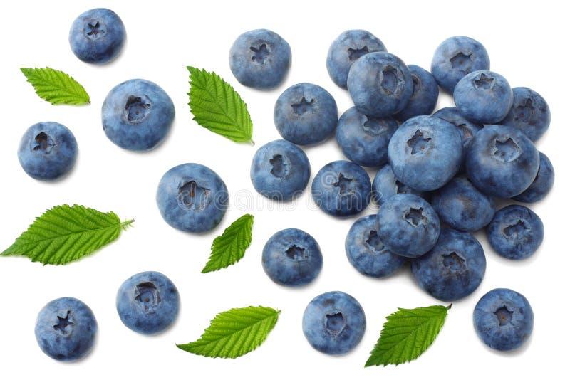 健康背景 与在白色背景隔绝的叶子的蓝莓 顶视图 免版税库存照片