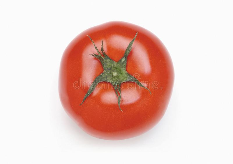 健康蕃茄 免版税图库摄影