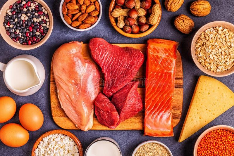 健康蛋白质-肉,鱼,乳制品的来源 库存照片