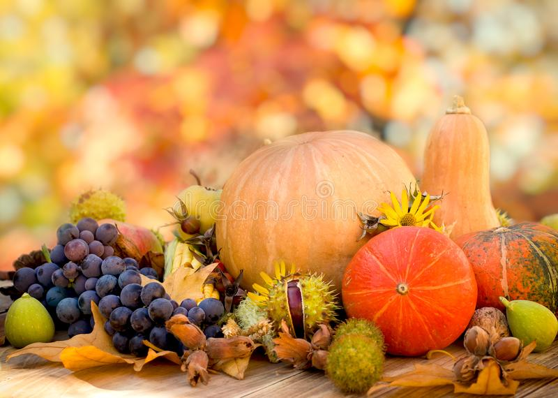 健康食物,健康吃-有机季节性果子,感恩,在桌上的收获 库存图片