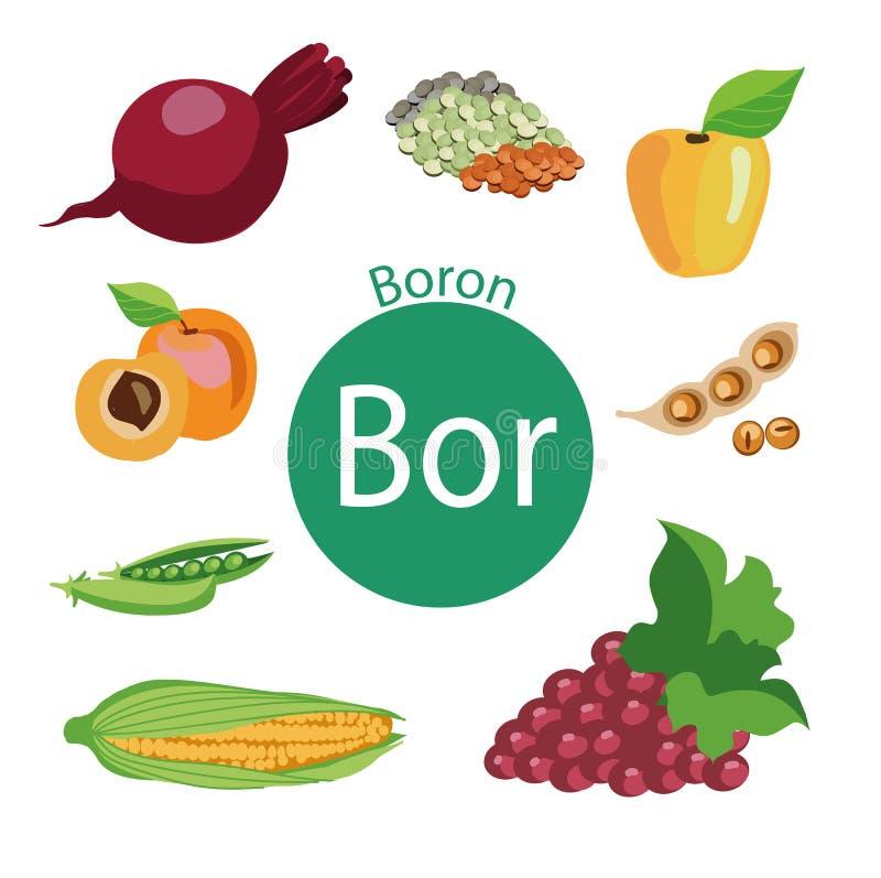 健康食物A套与维生素一个高内容的有机有机食品  库存例证