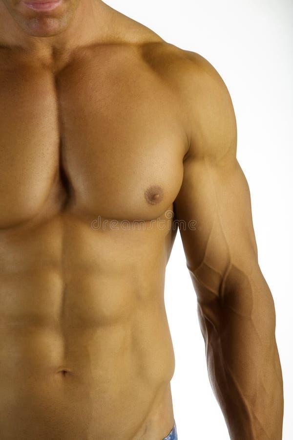 健身力量 库存图片