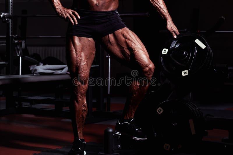 健身房的运动员 做锻炼的人 腿特写镜头画象有静脉的 与被晒黑的皮肤的男性模型 供以人员性感 免版税库存照片