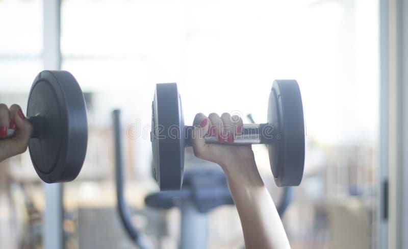 健身房锻炼dumbell释放重量 库存照片