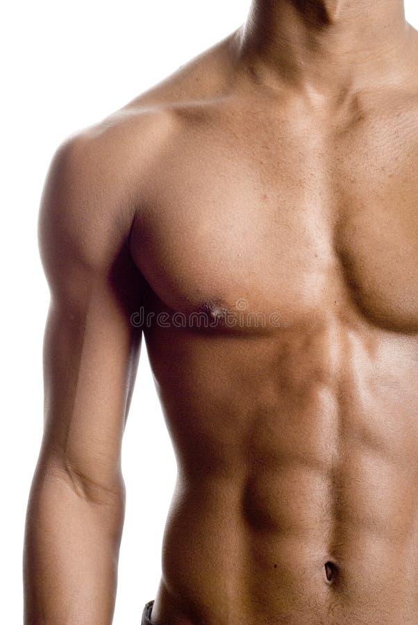 健身设计 库存照片