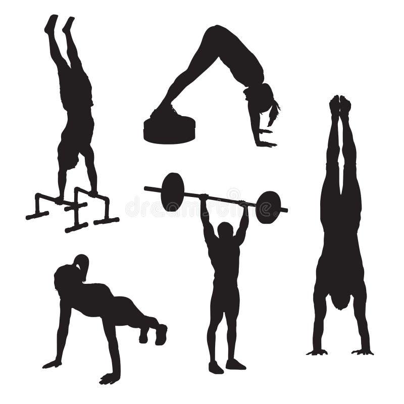健身象3 向量例证