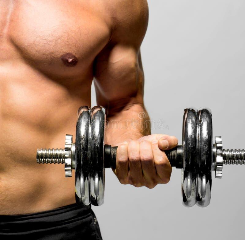 强有力的肌肉人举的重量 免版税库存照片