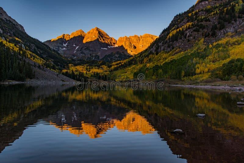 偶象褐红的响铃在一个秋天早晨-科罗拉多 库存照片