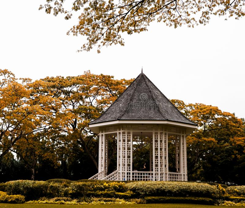 偶象露台在新加坡的植物园里 免版税库存照片