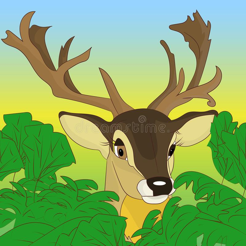 偷看在绿色灌木外面的鹿的头在森林, cartoo里 皇族释放例证