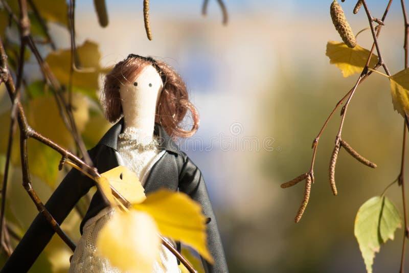 偷看通过桦树的分支的蒂达玩偶 免版税库存照片