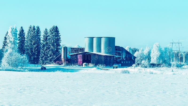 储存箱在拉普兰的芬兰冬天乡下 库存照片