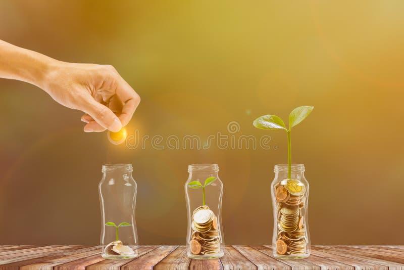 储蓄和投资 r 把硬币放的手入有增长的植物的玻璃瓶子在堆硬币上 ?? 库存照片