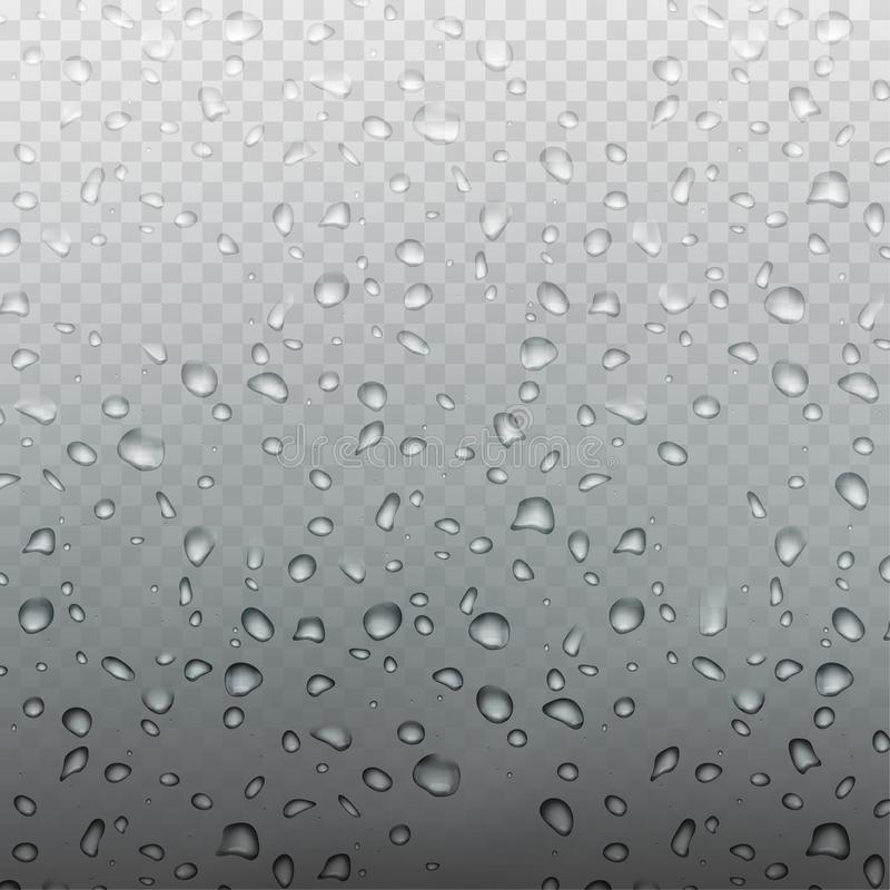 储蓄在透明方格的背景隔绝的玻璃的传染媒介例证雨现实水滴 EPS10 皇族释放例证