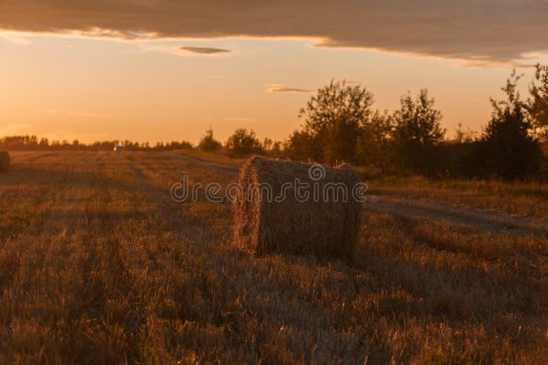 Download 储蓄干草风景 库存照片. 图片 包括有 乡下, 秋天, 玉米, 颜色, 秸杆, 食物, 夏天, 收获, 蓝色 - 59101124