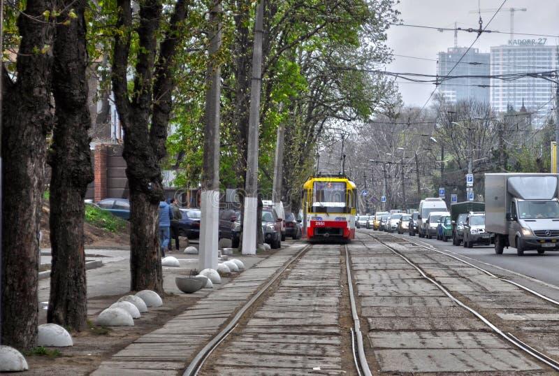 傲德萨乌克兰春天阿卡迪亚 库存照片