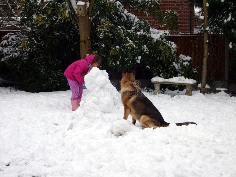 儿童和狗雪人大厦 库存照片