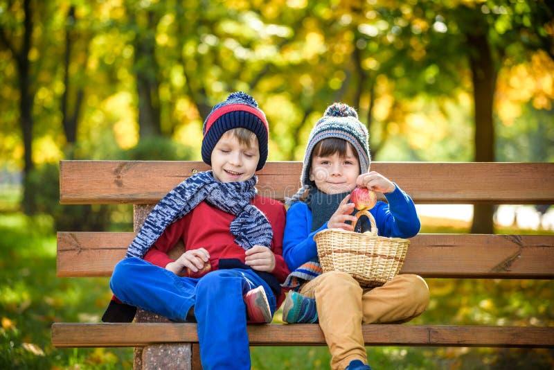 儿童在一个农场的采摘苹果在秋天 小男孩坐长凳在苹果树果树园 孩子在篮子的采撷果子 小孩 免版税库存照片