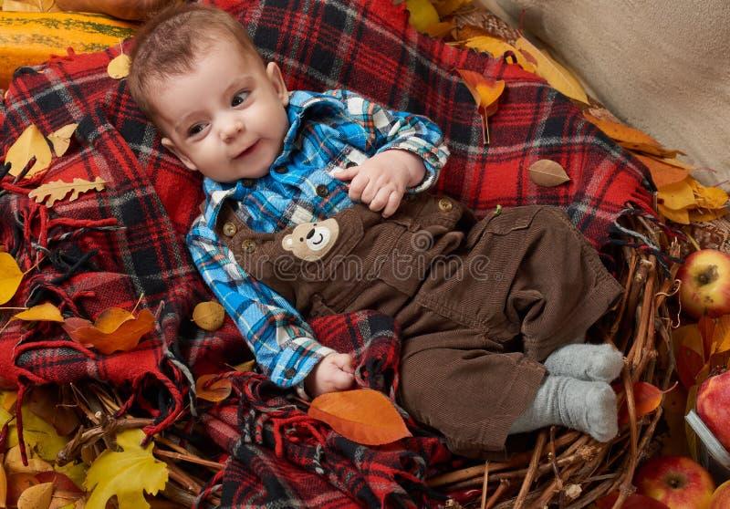 儿童在格子花的男孩谎言有黄色秋叶、苹果、南瓜和装饰的,秋季 免版税库存照片