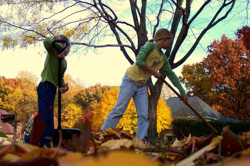 儿童在秋天的犁耙叶子 图库摄影