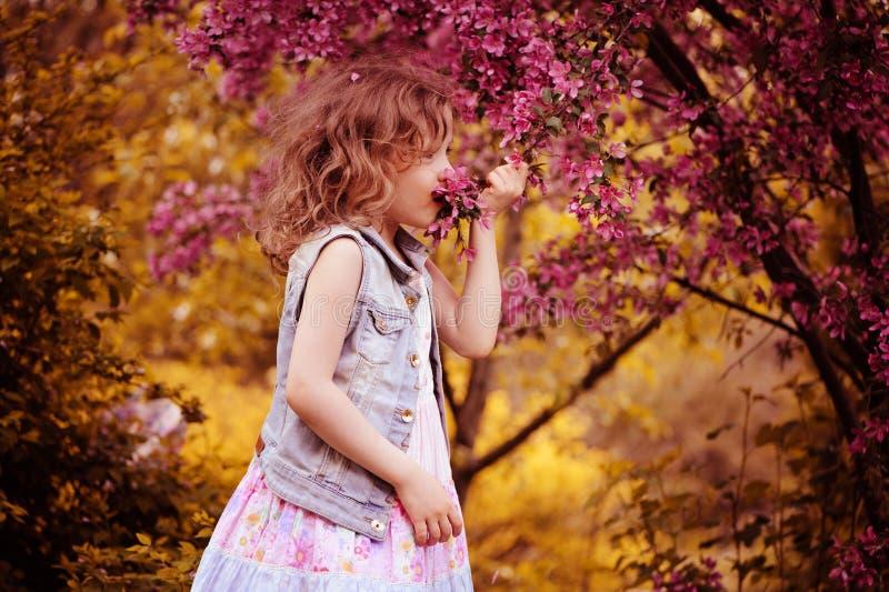 儿童女孩在春天庭院里嗅到樱桃花 库存图片