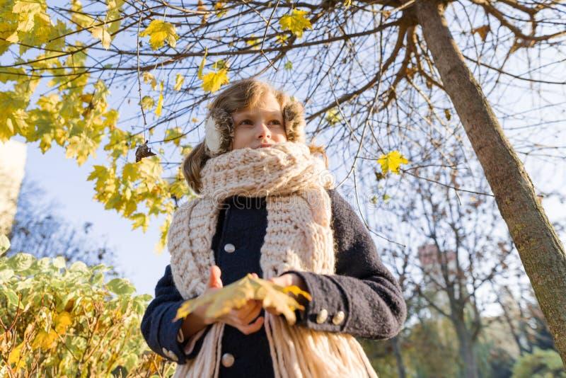 儿童女孩画象在槭树,背景秋天晴朗的公园下 免版税图库摄影