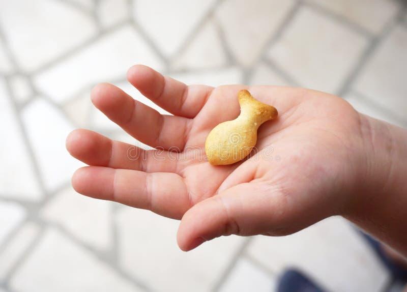 儿童拿着曲奇饼的` s手以鱼的形式 钓鱼在棕榈,运气的标志 免版税库存照片