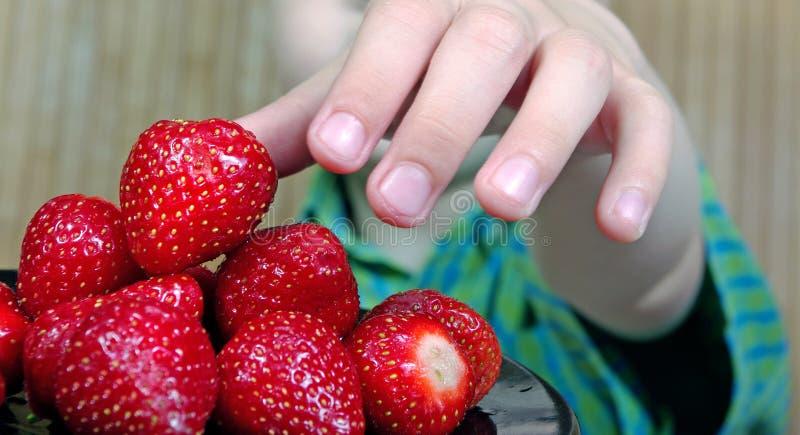 儿童拿着草莓的` s手 夏天健康吃概念 免版税图库摄影