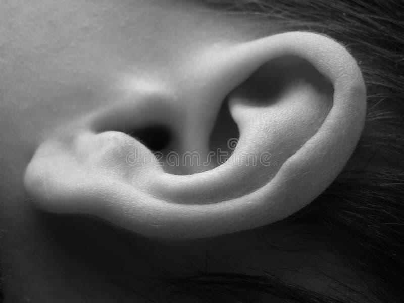 儿童接近的耳朵 免版税库存图片