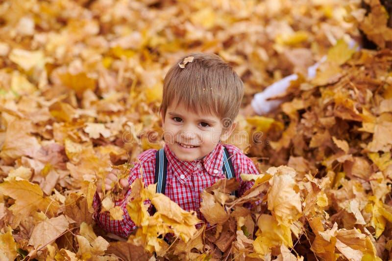 儿童男孩是说谎和使用在落叶在秋天城市公园 库存图片