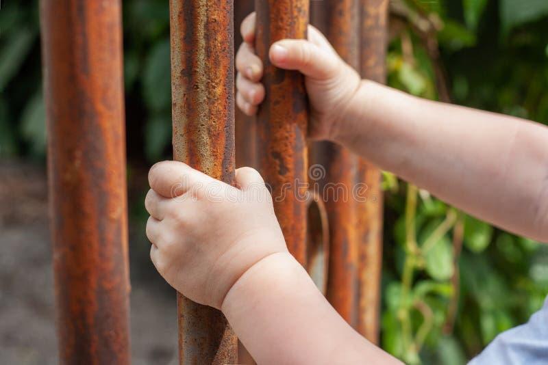 儿童的手设法出去 免版税库存图片