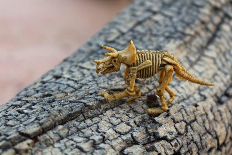 儿童的玩具 在老树的恐龙骨骼 免版税库存照片