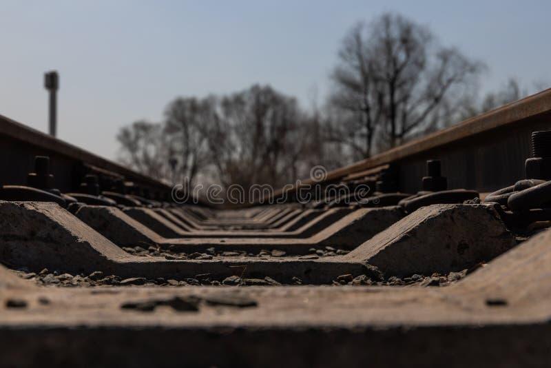 儿童的铁路住在真正的运输生活一个自然公园在俄罗斯 免版税库存照片