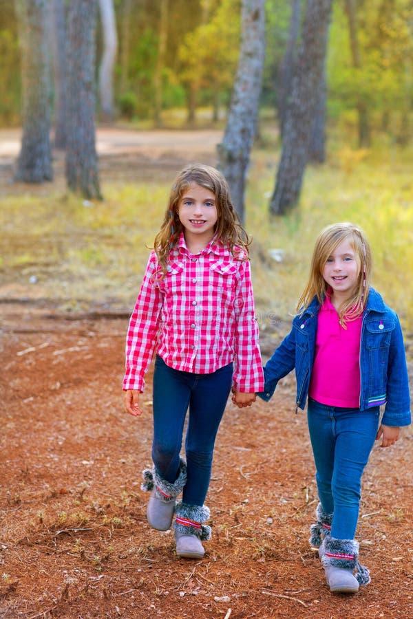 儿童走在杉木森林的姐妹女孩 免版税库存图片