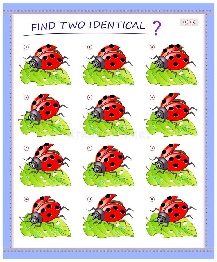 儿童逻辑游戏 需要找到两只一模一样的瓢虫 儿童教育页 皇族释放例证
