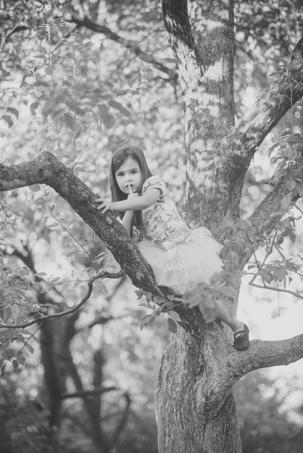 儿童` s情感 时兴的礼服皮的时尚孩子在树,秘密 免版税库存照片