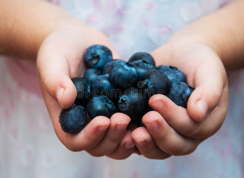 儿童` s手用蓝莓 免版税库存图片