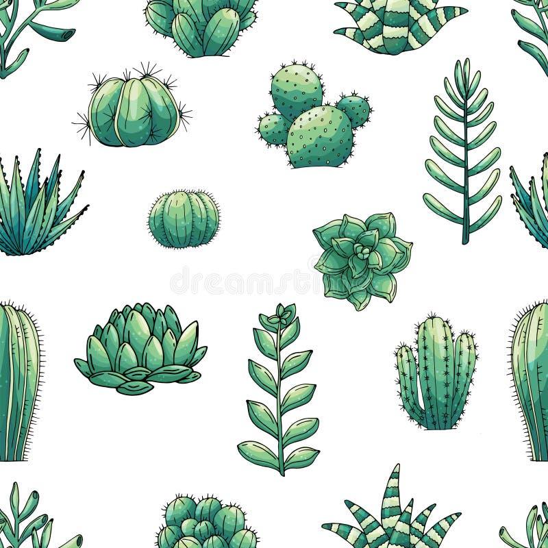 元素的无缝的传染媒介样式用手拉的色的仙人掌和多汁植物 库存例证