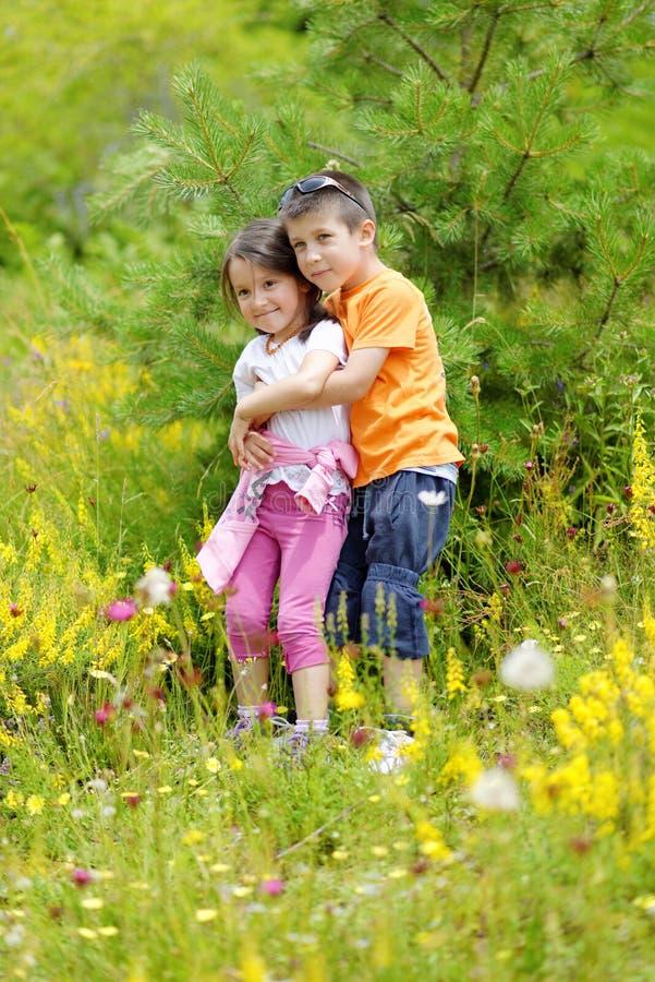 兄弟和姐妹在一个美好的夏日拥抱 免版税库存照片