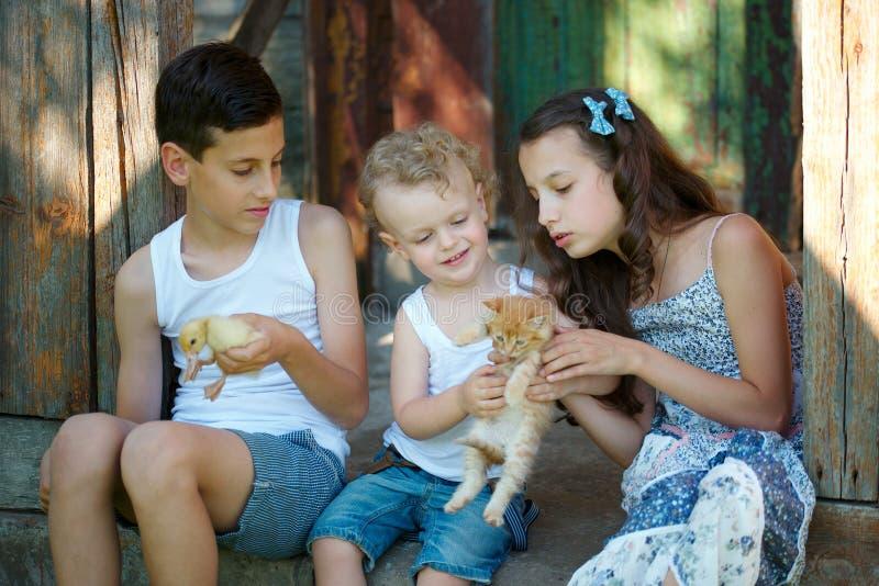 兄弟和姐妹在村庄度过夏天 库存图片