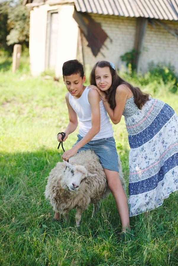 兄弟和姐妹在村庄度过夏天 免版税库存图片