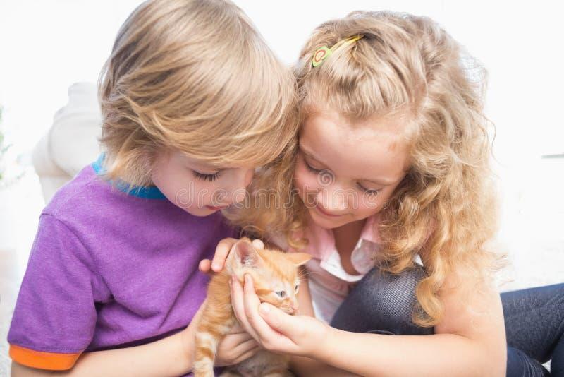 兄弟和姐妹有小猫的在家 免版税库存照片
