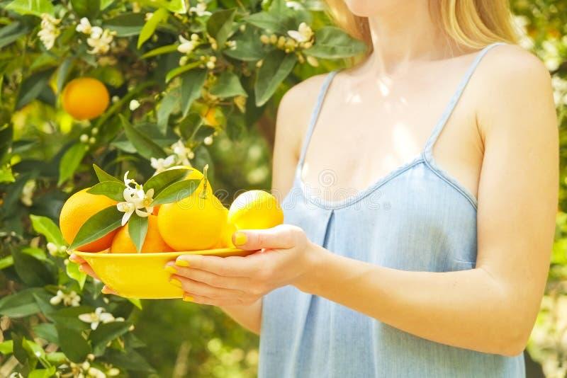 充分地方产物橙树农厂庭院阳光 收获,果子手采摘,有收获堆碗的女性农夫 免版税库存图片
