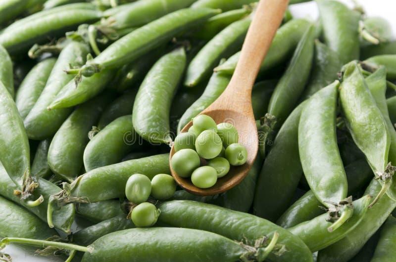 充分木匙子特写镜头在豌豆堆的绿豆在他们的荚的 免版税库存照片