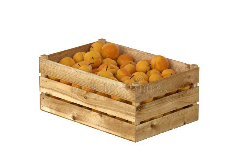 充分木箱桃子果子 背景查出的白色 向量例证