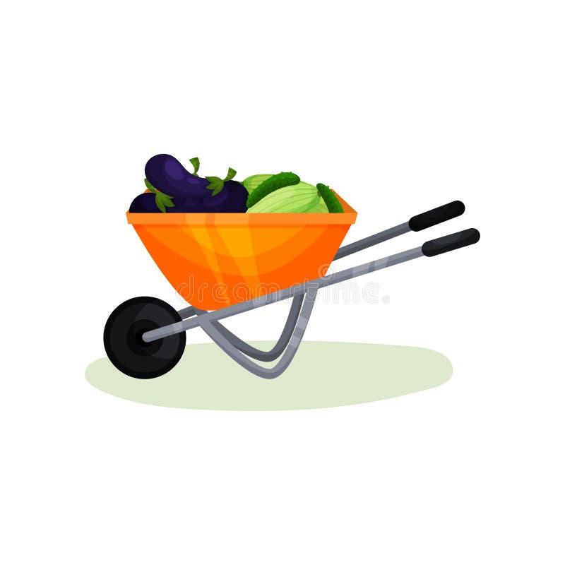 充分独轮车新鲜蔬菜 成熟茄子、黄瓜和夏南瓜 有机农厂食物 平的传染媒介设计 皇族释放例证